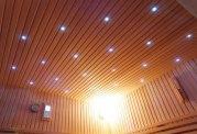 Sauna sec premium AX-006C